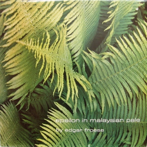 Edgar Froese - Epsilon in Malaysian Pale