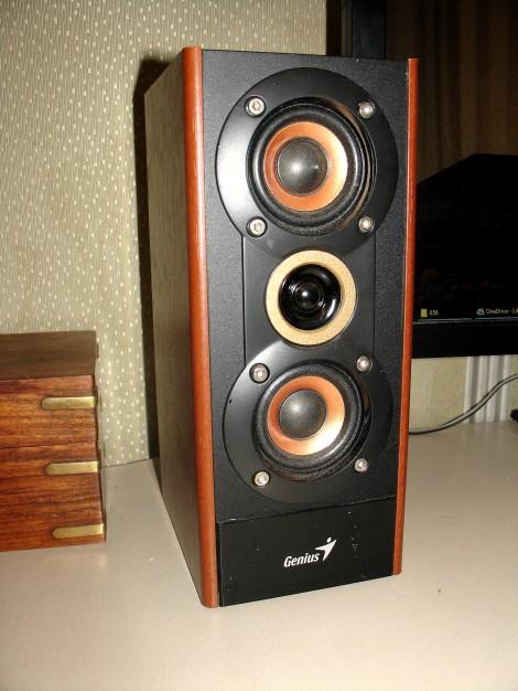 06 Speakers with Copper Cones.JPG